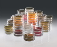 Sartorius  Nutrient Pad Sets in Petri Dishes