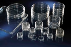 Nunc  Cell Culture Dishes, Nunclon™ Δ Surface